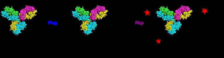 Acyl fluorides: fast, efficient, and versatile lysine-based protein conjugation via plug-and-play strategy, Bioconjugate Chem., 2017, 28, 1452-1457.