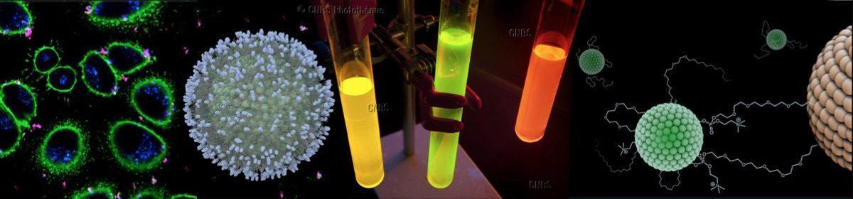 Laboratoire de Conception et Application de Molécules Bioactives